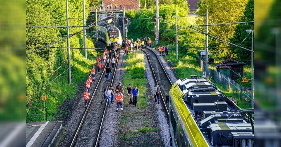 Abkürzung über Gleise: 14-Jährige von Zug erfasst