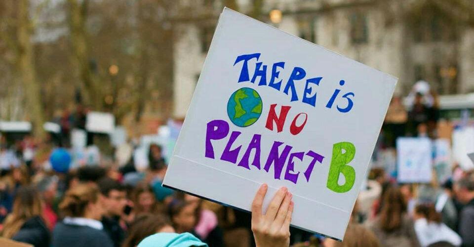 Klimaaktivisten besetzen Altdorfer Wald