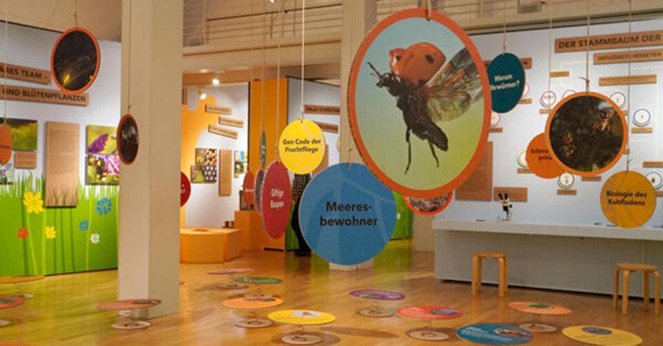 Action im Museum