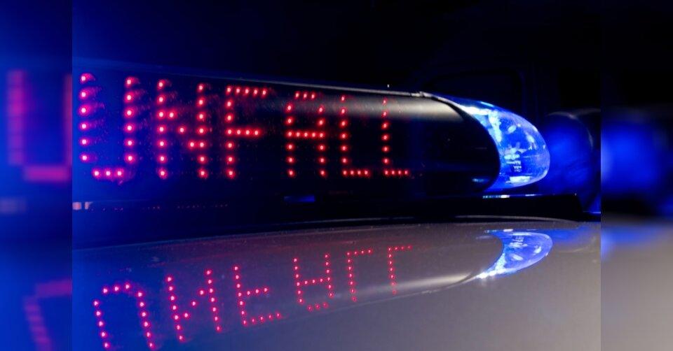 Autofahrer prallt wegen Reh mit Streifenwagen zusammen