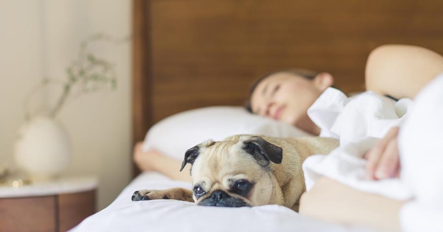 Das A und O für einen strahlenden Teint ist ein erholsamer und ausreichend langer Schlaf – mindestens 7 Stunden sollten es sein.