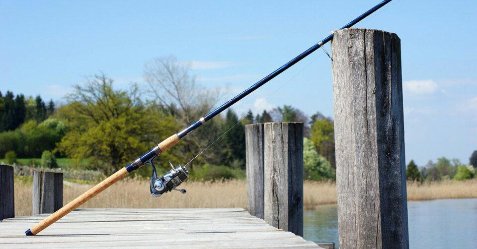 Mehr Planungssicherheit für Berufsfischer am Bodensee: Bayerisches Fischereigesetz wird überarbeitet