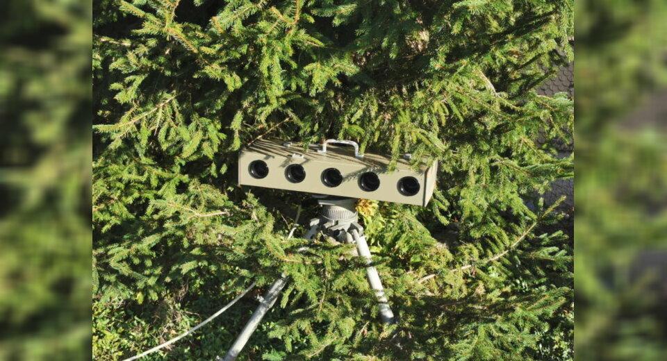 Achtung: Gefährlicher Tannenbaum!