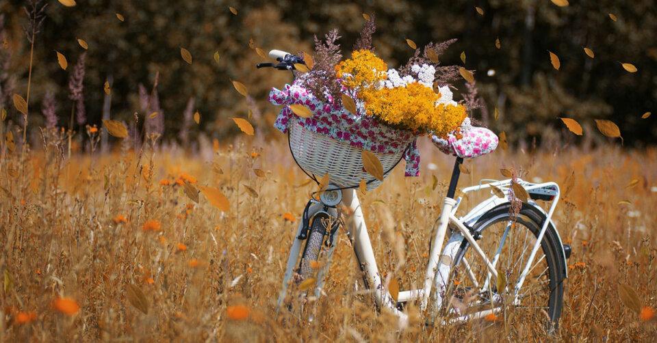 Jetzt notwendig: Ein Frühjahrs-Check fürs Fahrrad