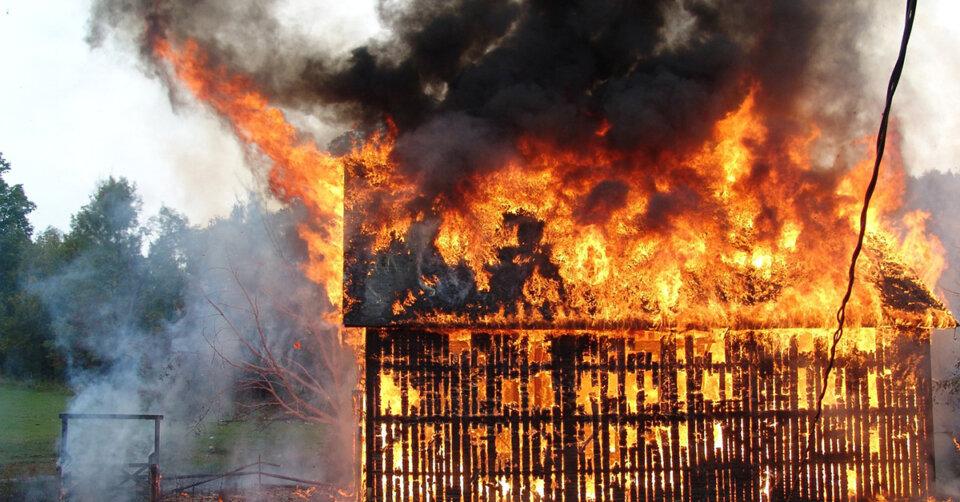 Hühnerstall abgebrannt: Mehr als 300 Tiere gerettet