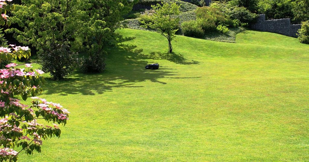 Ein schöner Rasen will gepflegt sein. Wir haben die Tipps dazu