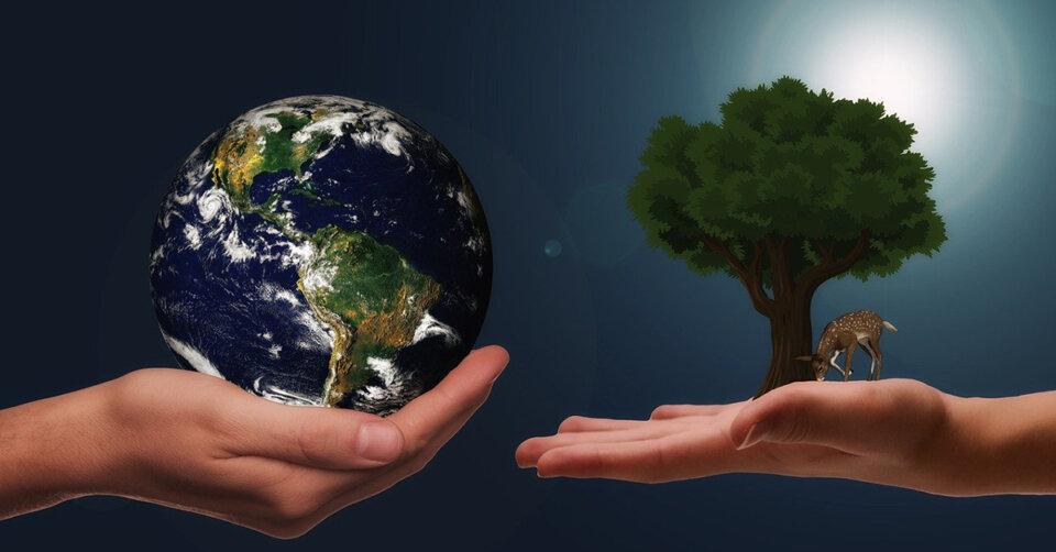 Für ein gesundes Klima: Jeder kann im alltäglichen Leben etwas beitragen