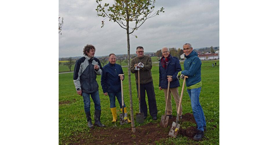 "Klimaschutzaktion ""1000 Bäume für 1000 Kommunen"": Biberach pflanzt 30 250 Bäume"