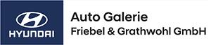 Auto Galerie Friebel & Grathwohl GmbH