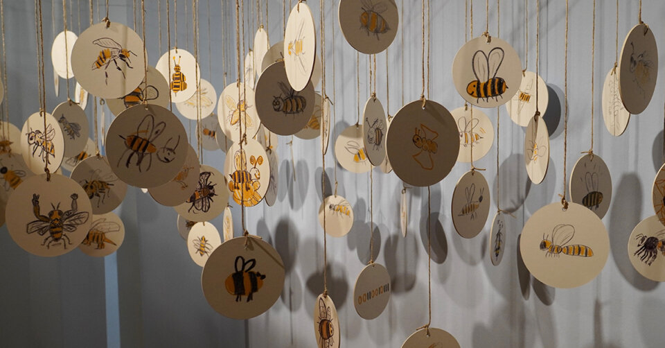 "Museum Biberach öffnet wieder: Sonderausstellung ""Bienen & Co."""