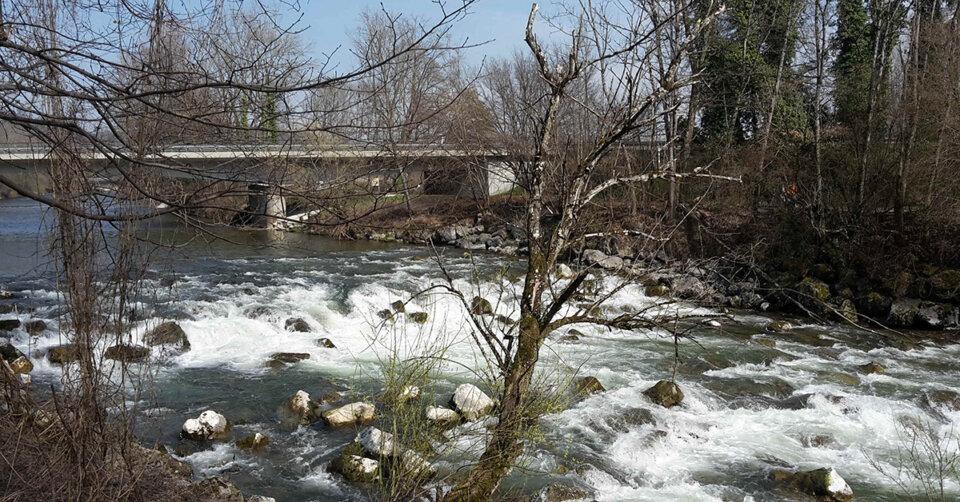 Fischaufstieg in der Argen bei Kressbronn wird saniert