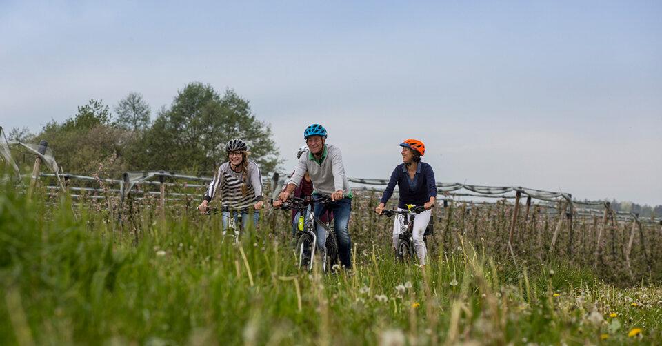 Stadtradeln in Friedrichshafen: Jeder kann mitmachen