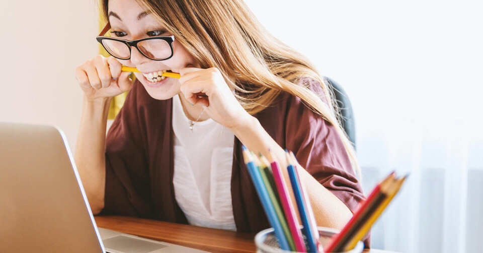 Sich online über verschiedene Studienangebote informieren lassen