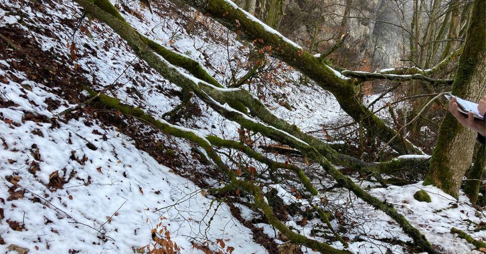 Schäden auf den Premiumwegen rund um Sigmaringen