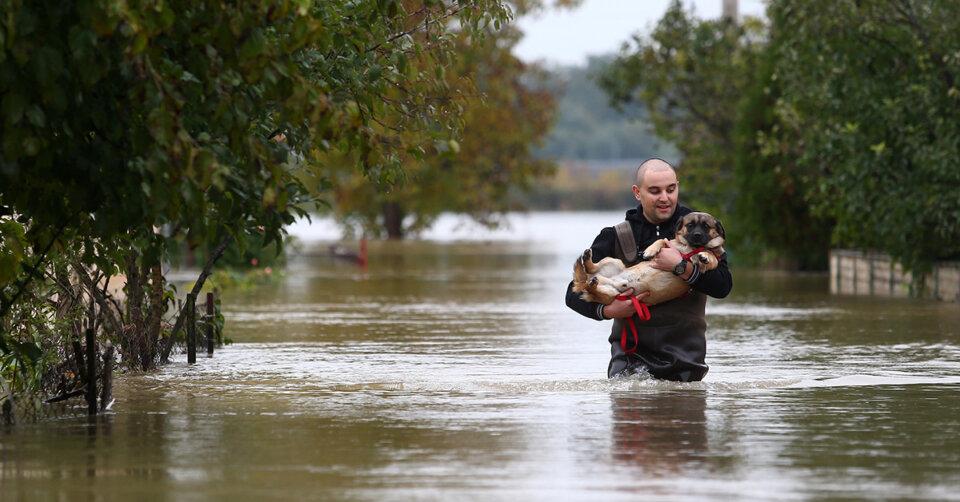 Spendenaktion für Tiere in Hochwasser Region