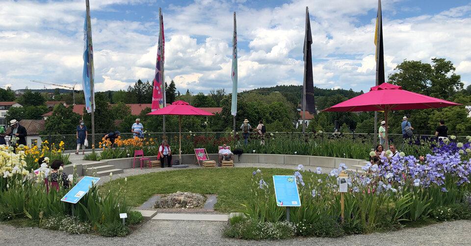 Landesgartenschau: Auf dem Rosenobelturm blüht der Iris-Farbkreis