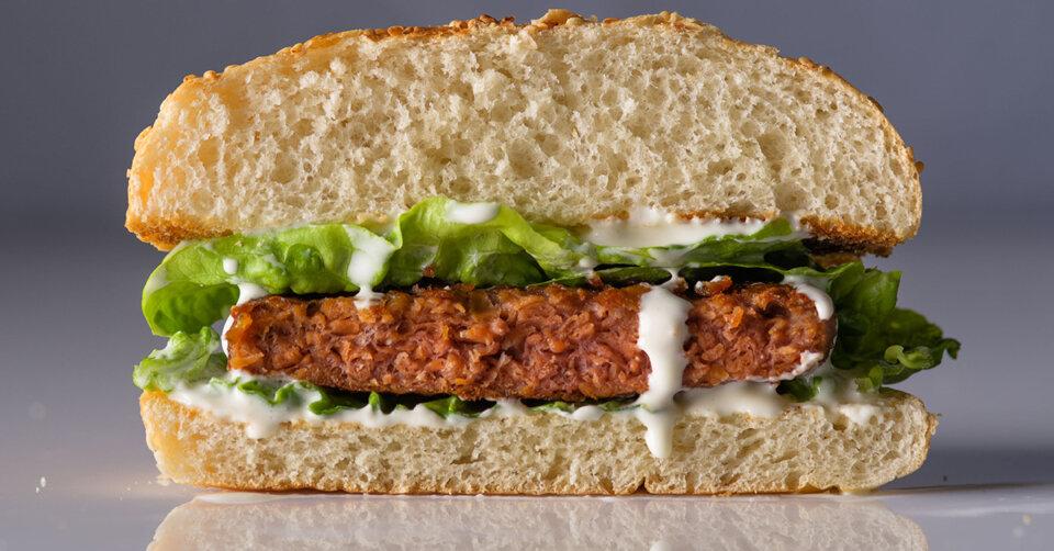 Veggie-Burger-Patties: Die Hälfte ist empfehlenswert