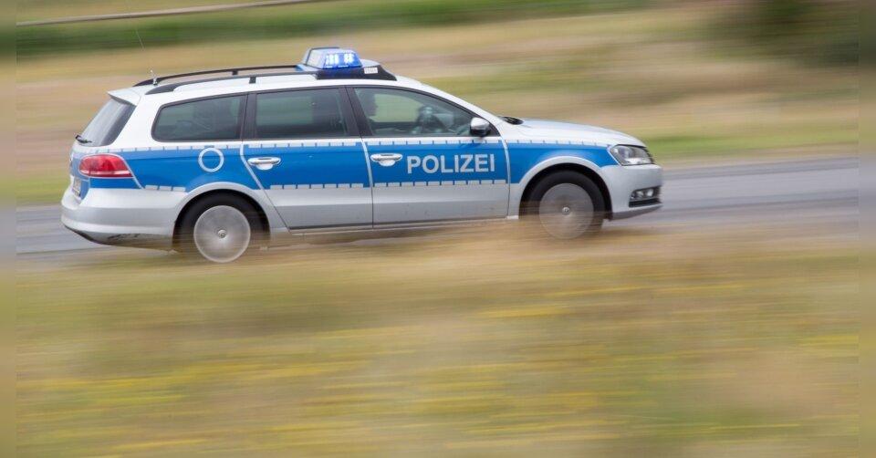Von Spürhund gebissen: Mann flieht mit Auto vor Polizei