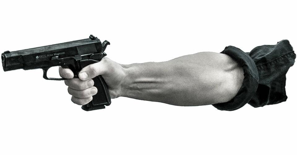 Schüsse führen zu Polizeieinsatz