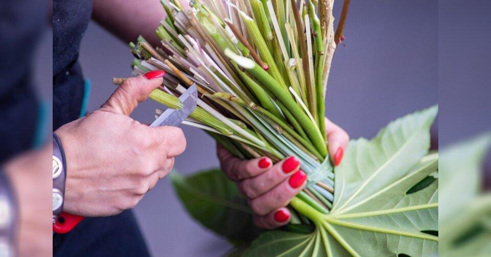 Wegen unklarer Rechtslage könnten Floristen zu bleiben