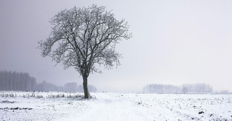 """""""April-Winter"""" bis Donnerstag: Kräftiger Schneefall Mittwochnacht – bald wärmer!"""
