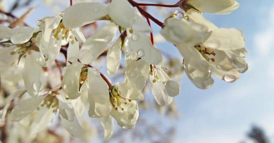 Mehr Sonnenschein & langsam wärmer: Ungemütliches Aprilwetter verabschiedet sich