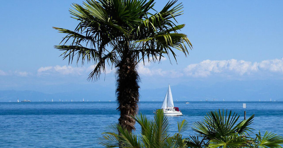 Südwestlage mit viel Sonne und Hitze: Der Sommer gibt Vollgas!
