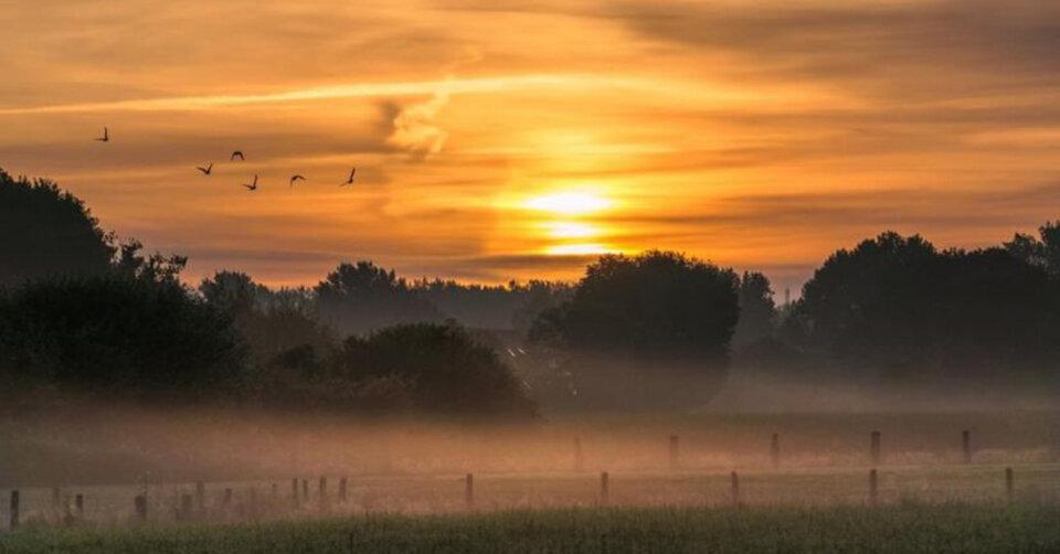 Sonne, Wolken und Nebel: Kalendarischer Herbstanfang startet freundlich – nächste Woche Ü20-Grad-Wetter?